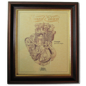 TRIUMPH SPEED TWIN Gold Leaf Limited Edition Engine Drawing